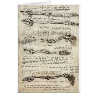 Studier av armen av Leonardo Da Vinci C. 1510 Hälsningskort