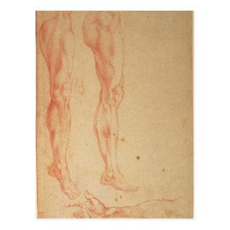 Studier av ben och ärmar vykort