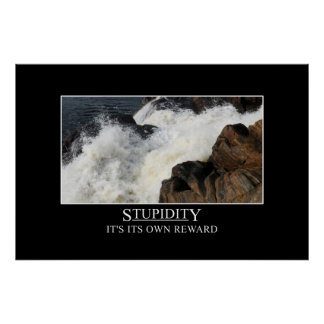 Stupidity är dess egna belöning XL Posters