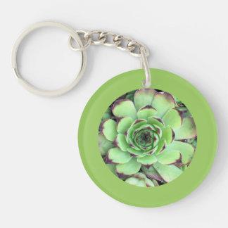 Suckulent gräns för fotolövgrönt dubbelsidigt rund akryl nyckelring