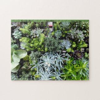 Suckulentpussel personifierar kaktusväxter pussel