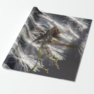 Sunlit maskros som slår in papper presentpapper