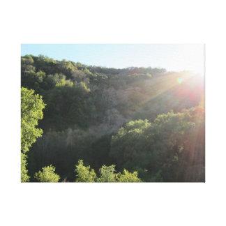 Sunol regional vildmark 2 canvastryck