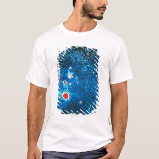 Supernova 1987 t shirts