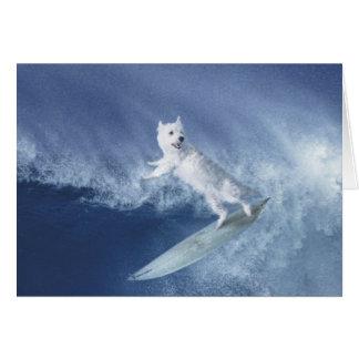 Surfa Westie! Hälsningskort