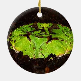 Surinam Horned groda Ceratophrys Cornuta Julgransprydnad Keramik
