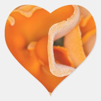 Svamp för orange peel, Aleuria aurantia Hjärtformat Klistermärke