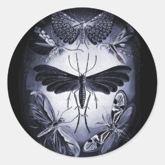 Svamp Mothes i skymning Runt Klistermärke