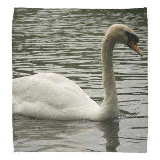 Svan i sjön scarf