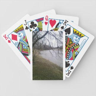 Svandal som leker kort spelkort