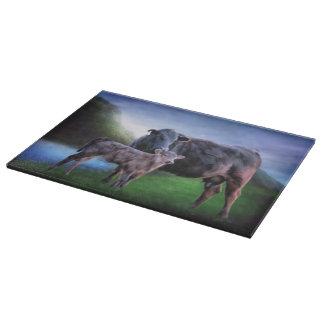 Svart Angus ko och kalv