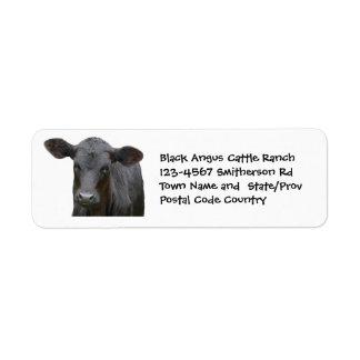 Svart Angus nötkreatur brukar eller ranchklistermä Returadress Etikett