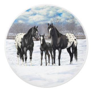 Svart Appaloosahästar i snö Knopp