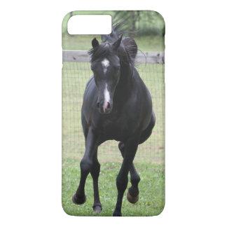 svart arabisk häst för spring