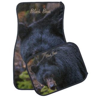 Svart björnmajestät bilmatta