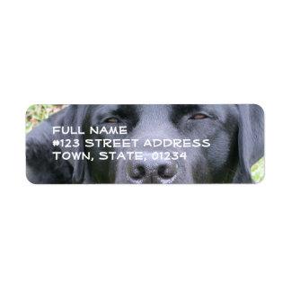 Svart etikett för brevskickande för Labrador Returadress Etikett