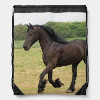 Svart häst vandringssäckar