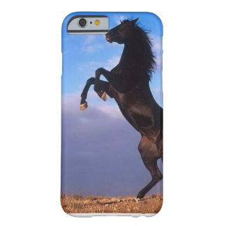 Svart hingst för vild som fostrar hästen barely there iPhone 6 skal