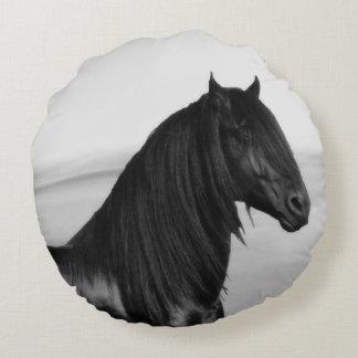Svart hingsthäst för Friesian Rund Kudde