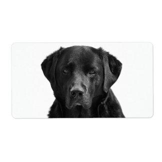 Svart hund för valp för Labrador Retriever Fraktsedel