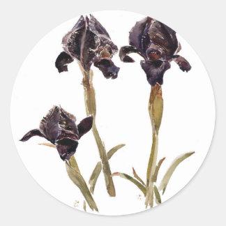 svart iris av Jordanien Runt Klistermärke