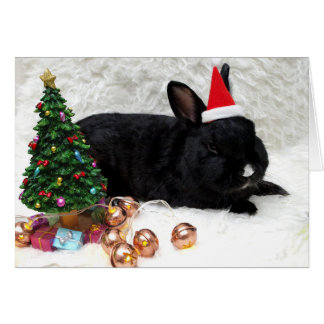 Svart kaninjulkort hälsningskort