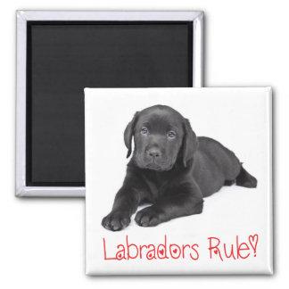 Svart kärlek för hund för valp för Labrador Magnet
