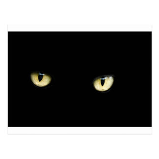Svart katt ögon vykort