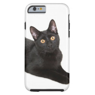 Svart katt tough iPhone 6 case