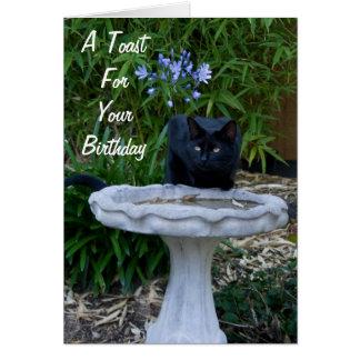 Svart kattfödelsedagkort 2 hälsningskort