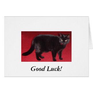 svart kattlycka till! hälsningskort