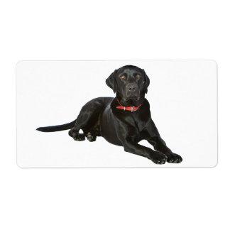 Svart klistermärke för hund för valp för Labrador Fraktsedel