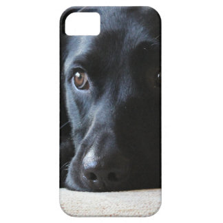 Svart Labrador Barely There iPhone 5 Fodral