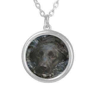 Svart Labrador för anpassade Retriever Silverpläterat Halsband