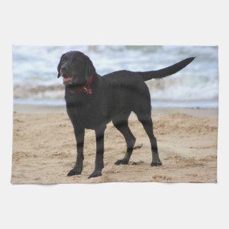 Svart Labrador hund Kökshandduk