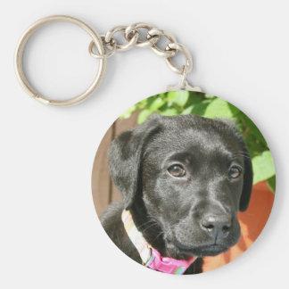 Svart Labrador nyckelring