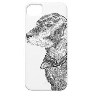 Svart Labrador Retriever iPhone 5 Fodraler