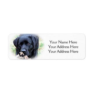 Svart Labrador - ta Time Returadress Etikett