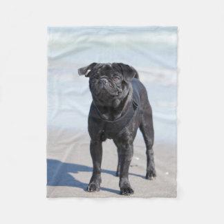 Svart mopsanseende på stranden fleecefilt