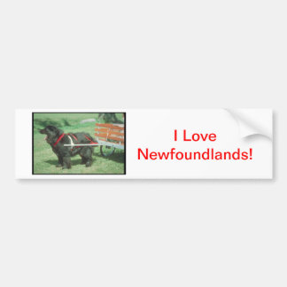 Svart Newfoundland Bildekal
