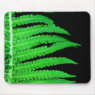 Svart och grön Fern Mus Matta