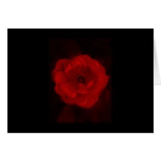 Svart och röda Rose. Hälsningskort