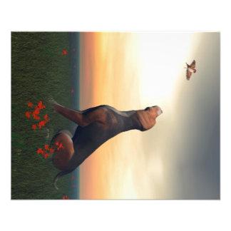 Svart- och solbrännahundhund och fågel flygblad