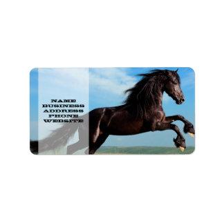 svart- och vildhingst som fostrar hästen adressetikett