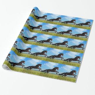 svart- och vildhingst som fostrar hästen presentpapper