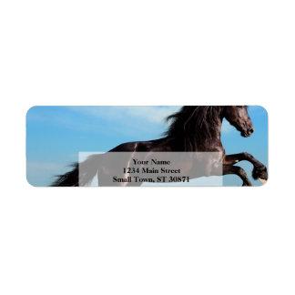 svart- och vildhingst som fostrar hästen returadress etikett