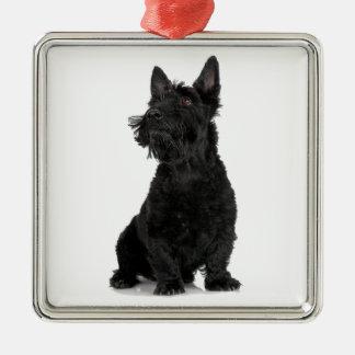 Svart skotsk Terrier Julgransprydnad Metall