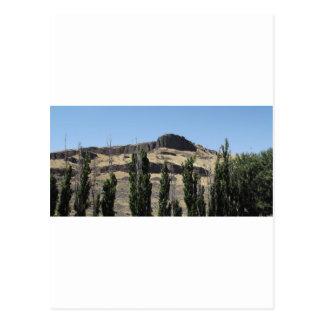 Svart sten och Cypress Vykort