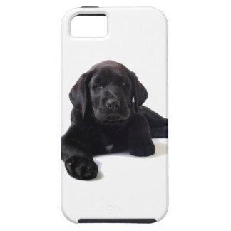 Svart valp för Labrador Retriever Tough iPhone 5 Fodral