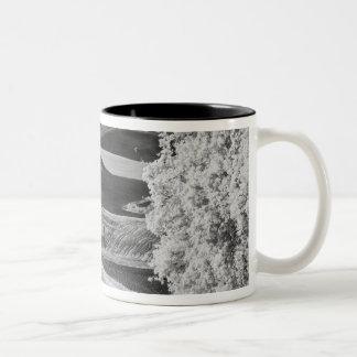 Svarten & vit beskådar av den slingriga vägen Två-Tonad mugg